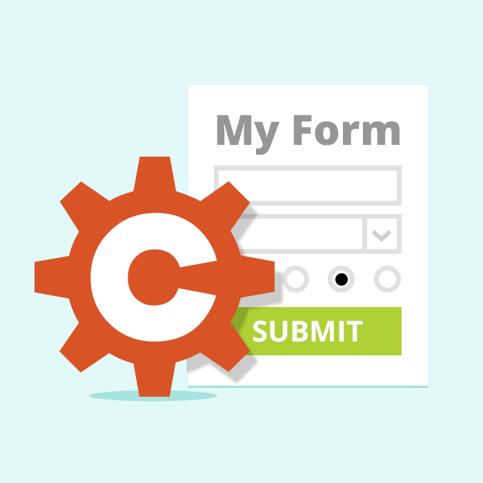 CSS Tips and Tricks for Customizing Error Messages! - Cognito Forms Blog